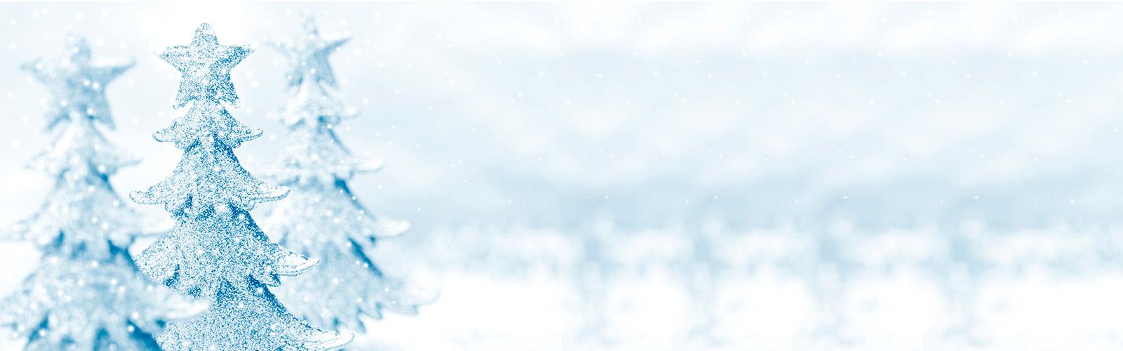 Hallmark Orlando Snow Background